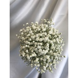 Hand Tied Gyp Maids Bouquet